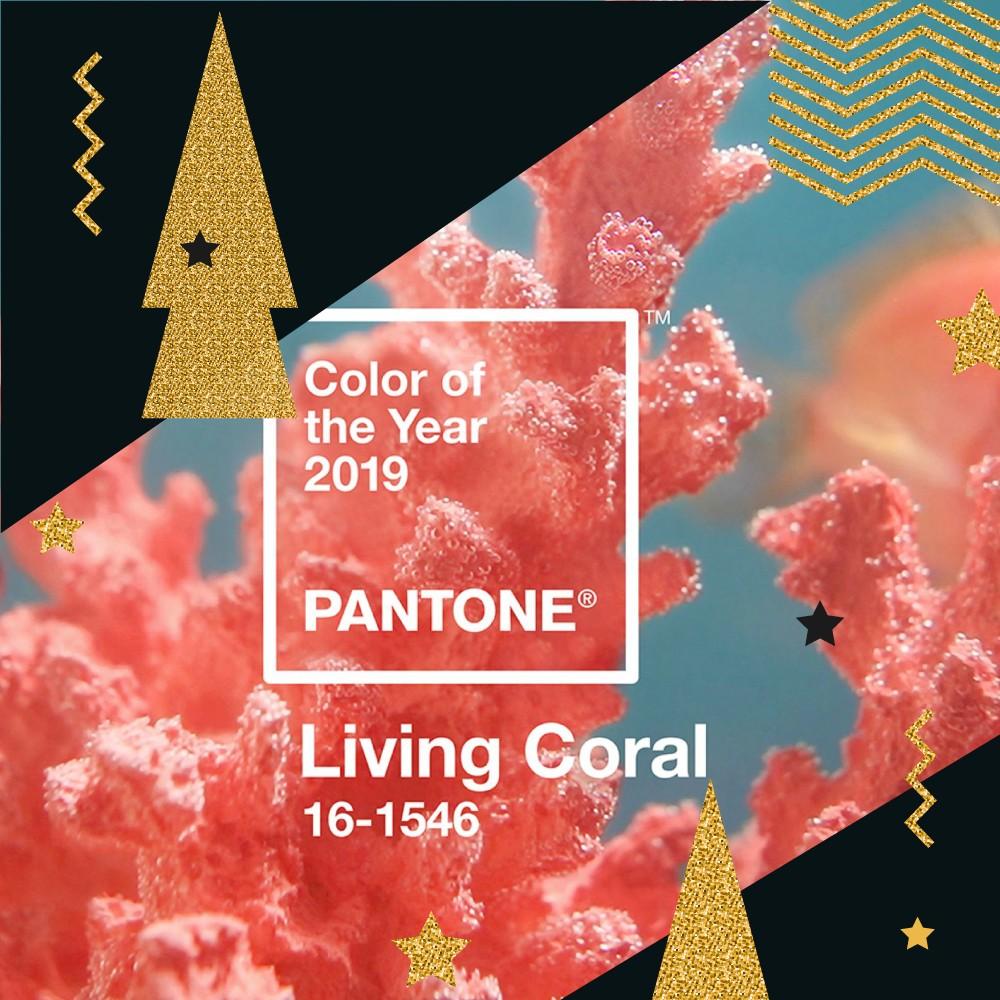 Pantone 2019 Yılının Rengini Seçti!
